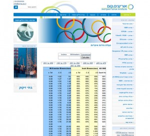 אורינגים.קום, בנייה וקידום אתרים - Mcpublish